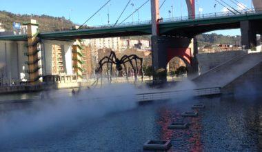 Ester - trastorno bipolar Bilbao Bizkaia
